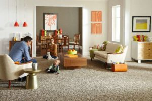 Mohawk   The Silk Reserve Carpet Collection