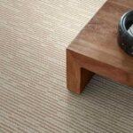 Anderson Tuftex Carpet POUNCE MALIBU - 00112
